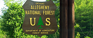 Casey Presses Administration to Step Up Efforts to Protect Allegheny National Forest in Northwestern PA, Make Progress on Timber Harvests that Are Critical to Region's Economy